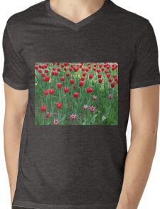 A large bed of red tulips Mens V-Neck T-Shirt