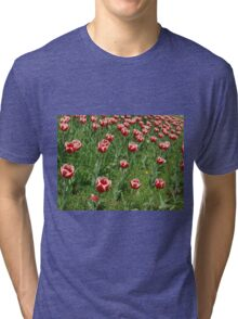 Lawn with red tulips closeup Tri-blend T-Shirt