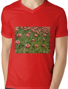 Lawn with red tulips closeup Mens V-Neck T-Shirt