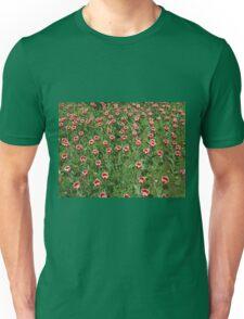Large field of tulips Unisex T-Shirt