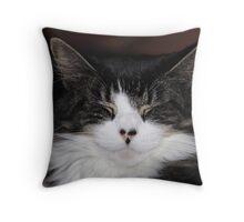 hmmmmm! Throw Pillow