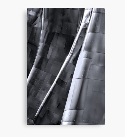 Experience Music Canvas Print
