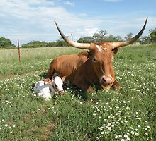 The Good Mother by IsbellLonghorns