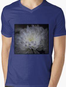 White & Wonderful Mens V-Neck T-Shirt