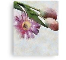 Blooming friends Canvas Print