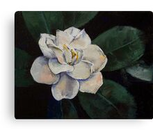Gardenia Oil Painting Canvas Print