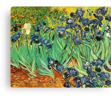 Irises, Vincent van Gogh Canvas Print