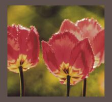 Glowing Red Tulips Baby Tee
