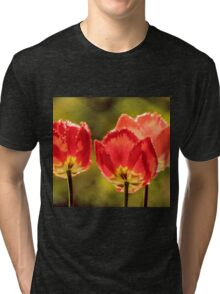 Glowing Red Tulips Tri-blend T-Shirt