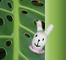 Peek-a-boo by Plum