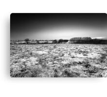 The Cold Morning BW Canvas Print