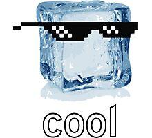 Ice Cube Cool Photographic Print