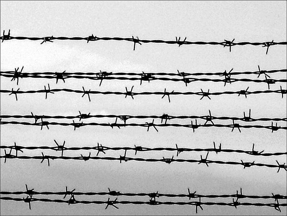Barbed wire by AleFletcher