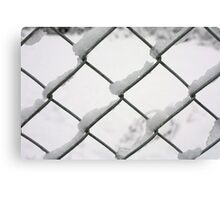 snow on wire fence Canvas Print