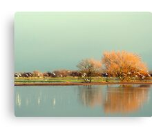 Before The Snow Storm  Canvas Print