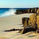 Basalt Rocks by Sheldon Pettit