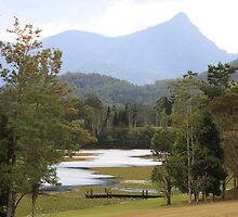 NSW: Mt Warning - Crams Farm Recreation Area  by SunnieGal