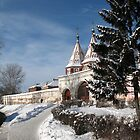 Gate in snow by Yulia Manko