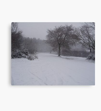 wintry scene Canvas Print