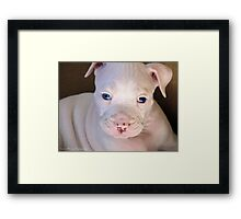 So Ugly He's Cute! Framed Print