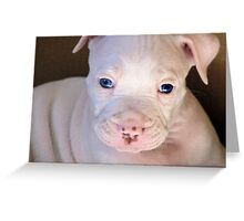 So Ugly He's Cute! Greeting Card
