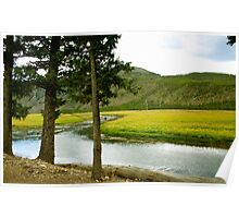 Yellowstone National Park Photgraphy Poster