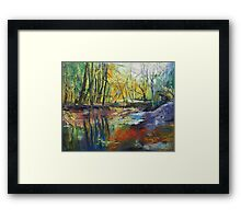 Little Sewickley Creek Framed Print