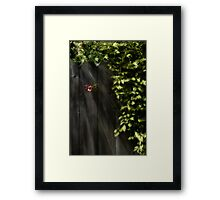 Protect Me With Your Warmth Framed Print