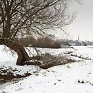 Bridgwater in the Snow from Durleigh Brook by kernuak