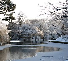 Snow in Birkenhead Park by PhotogeniquE IPA