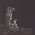 Meerkat babysitting by Hilary Robinson