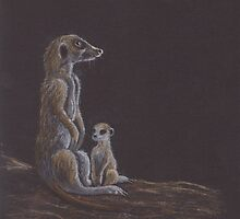 Meerkat babysitting by Hilary Robinson
