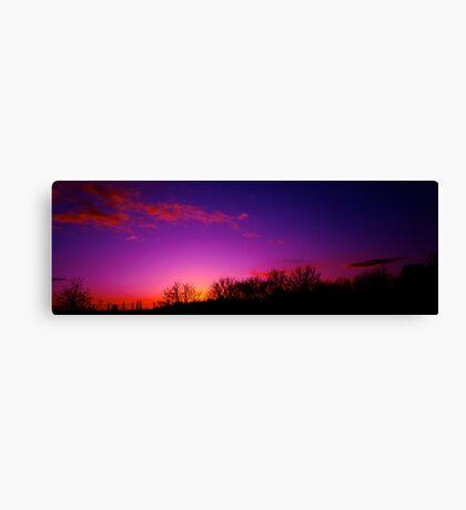 """A Beautiful Oblivion"" Canvas Print"