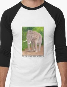 Asian Elephant (Elephas maximus) Men's Baseball ¾ T-Shirt