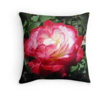 IMG-0776 Throw Pillow