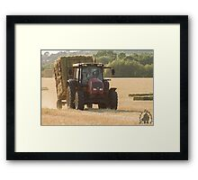 Busy time of year  Framed Print