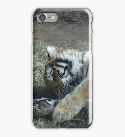 Kitty Playing iPhone Case/Skin