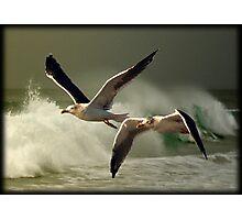 Flying to Sunrise Photographic Print