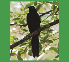 Great-Tailed Grackle Kids Clothes