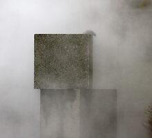 Steamed by Lynn Wiles