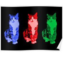 Grumpy Pop Art Cat Poster