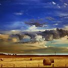 Summer Bales by oddoutlet