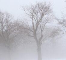 Foggy Trees Sticker