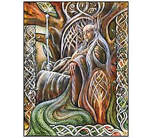 King of Mirkwood Photographic Print