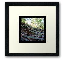 The Path TTV Framed Print