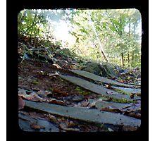 The Path TTV Photographic Print