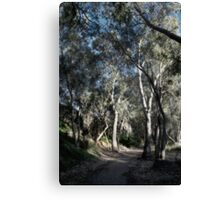 We'll Walk This Path Together Canvas Print