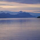 Sunset Glacier Bay Alaska by Melva Vivian