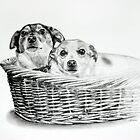 Basket of Joy by Melanie Deroon