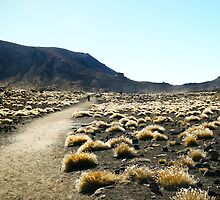 Crossing path at Tongariro by Redcandy